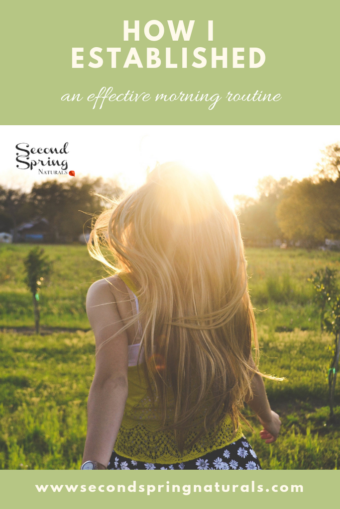 A Morning Routine to Make your Day more Efficient