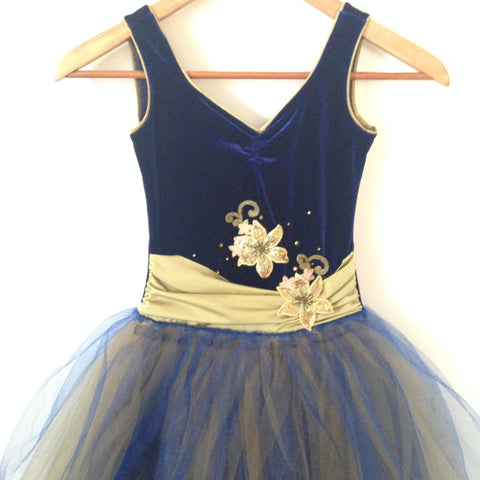 Navy Velvet and Gold Contemporary Used Costume