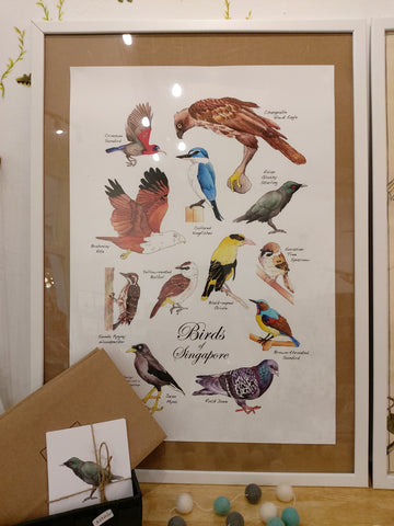 Birds of Singapore poster