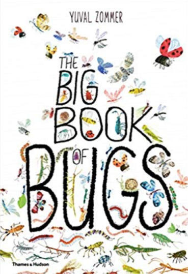 Big Book of Bugs by Yuval Zommer