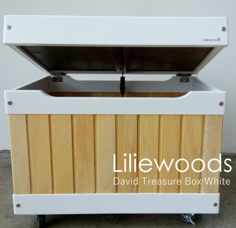 Liliewoods David Treasure Box
