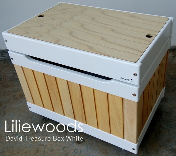 David Treasure Box