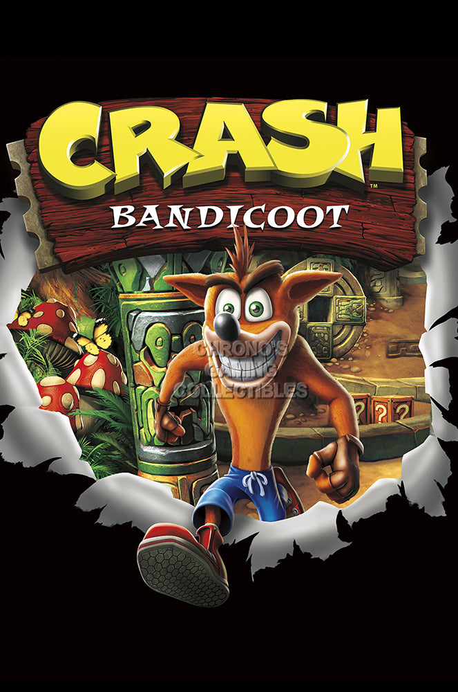 CGC Huge Poster GLOSSY FINISH - Crash Bandicoot Original Art PS1 PS2 - EXT920