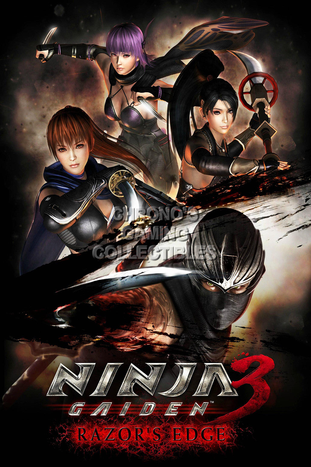 Ninja Gaiden Video Games Poster Cgcposters