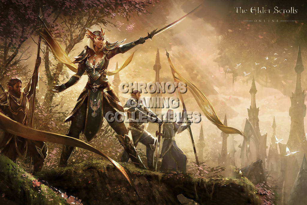 CGC Huge Poster - Elder Scrolls Online XBOX 360 ONE PS3 PS4 - EDS024
