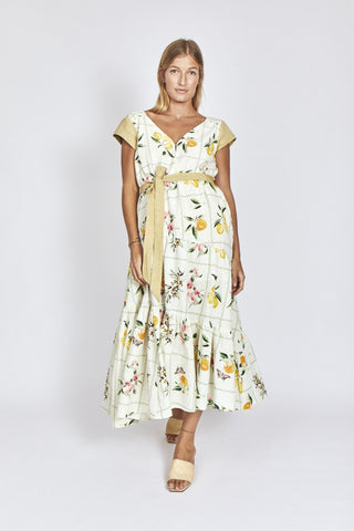Alessandra Picnic Splice Dress