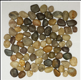 Earth Mixed Polished Pebble Tile