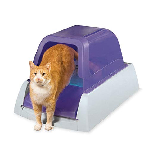 PetSafe ScoopFree Ultra Self-Cleaning Cat Litter Box – Automatic with Disposable Tray – Purple Covered