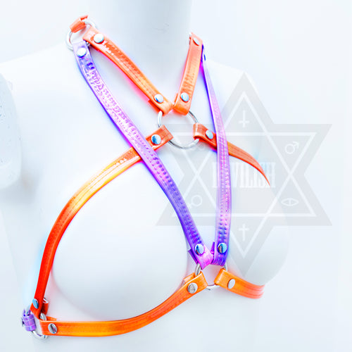 Neon beam harness