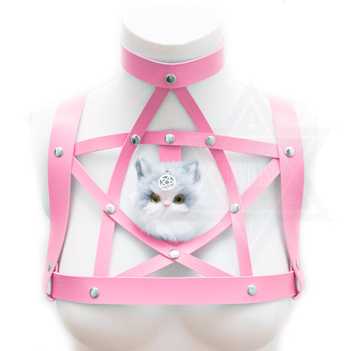 Kitten magic harness