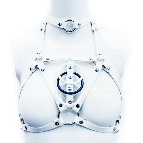 Spine harness