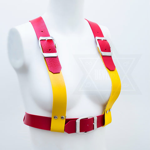 Mustard and ketchup harness
