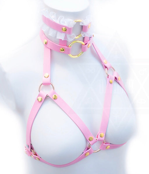 Pretty in pink harness