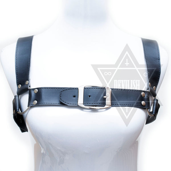 Heavy Leather harness*
