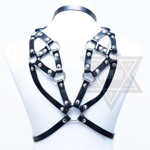 Wings harness