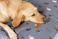 FatFace Marching Dogs Deep Duvet Bed