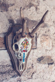 """Day Of The Dead"" Roe Deer Skull"