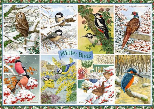 Winter Birds 1000 pieces