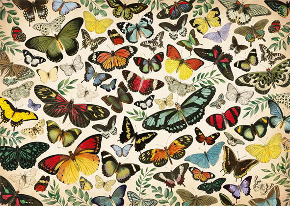 Butterfly Poster 1000 Piece Jigsaw Puzzle