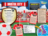 Bristol City  Football Club Jigsaw Puzzle - 1000 pieces