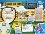 Mansfield Town  Football Club Jigsaw Puzzle - 1000 pieces