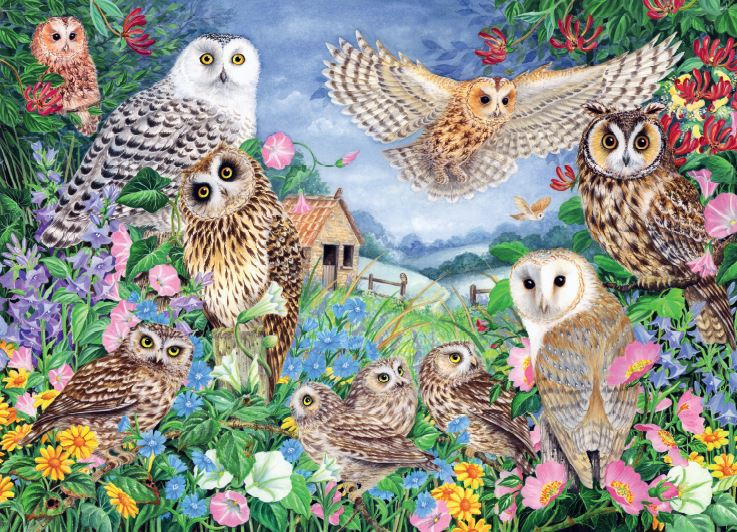 Falcon de luxe Owls in the Wood 1000 Piece Jigsaw Puzzle