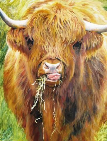 Highland Cow, 1000 Piece Jigsaw Puzzle - All Jigsaw Puzzles UK  - 1