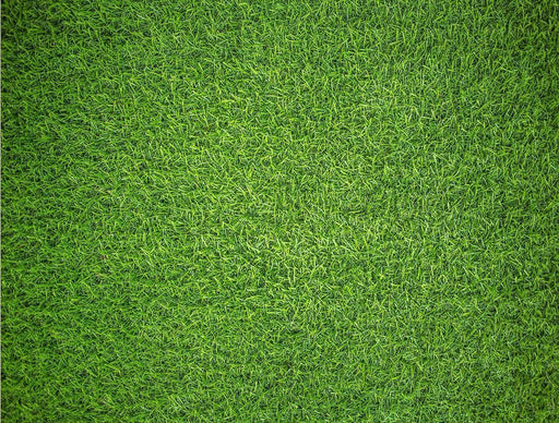 Jigsaw Puzzle - Natural Grass - Impuzzible - 1000 Piece Jigsaw Puzzle