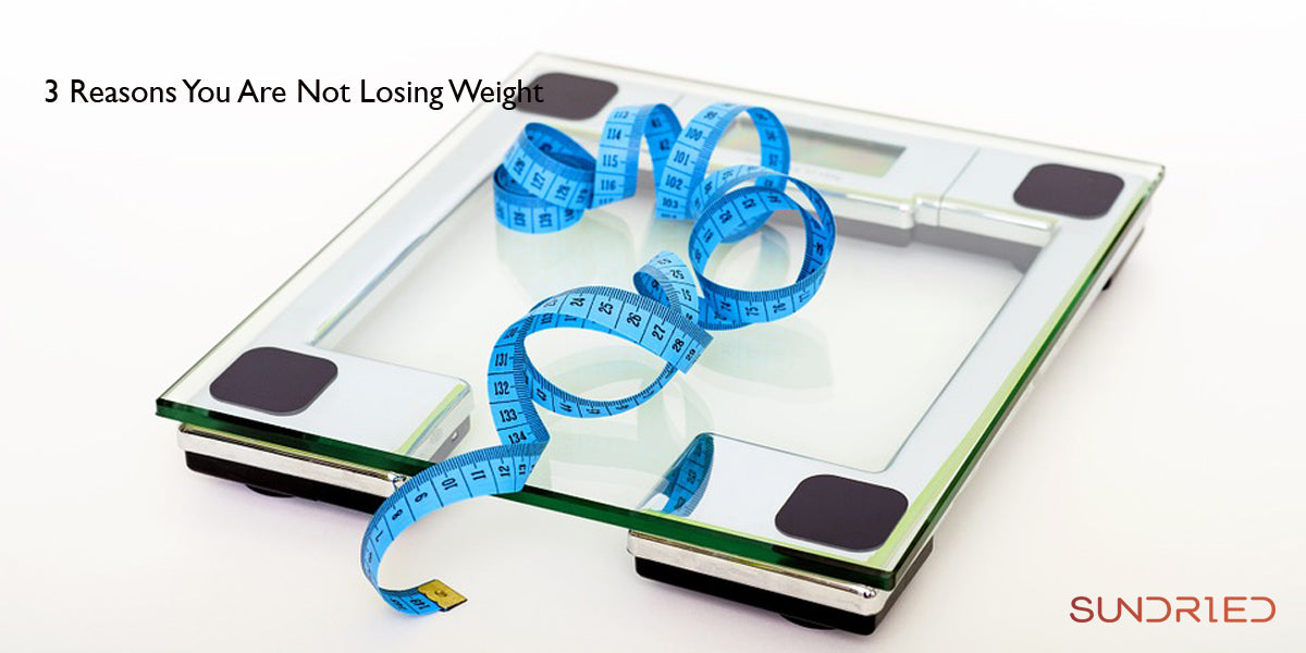 3 reasons you are not losing weight sundried