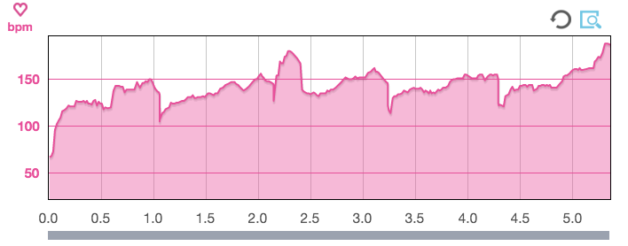 Heart Rate Data from the Epson Runsense SF-810