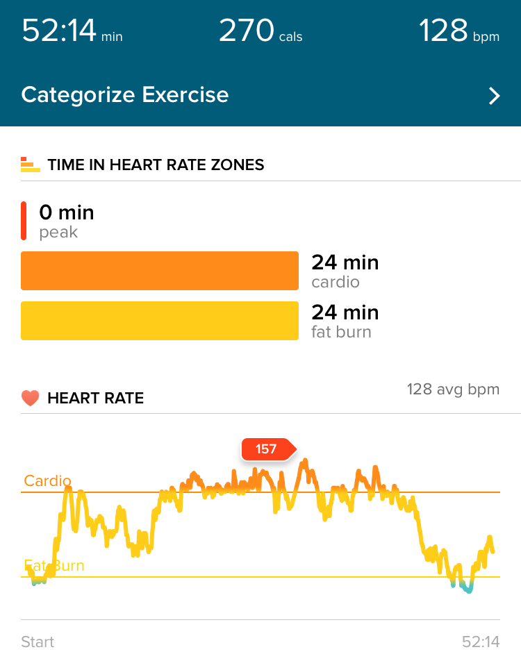 Fitbit Workout Summary