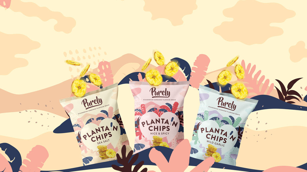 Purely Healthy Snack Review