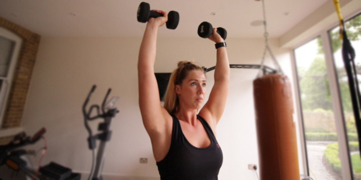 Shoulder Press Weights Exercise Sundried