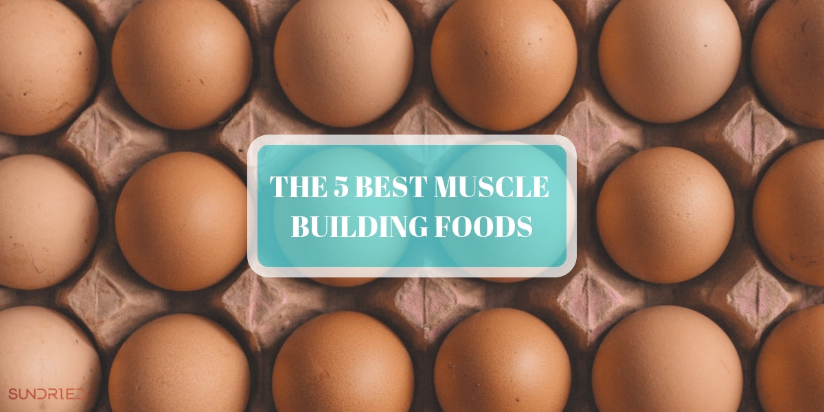 5 BEST MUSCLE BUILDING FOODS