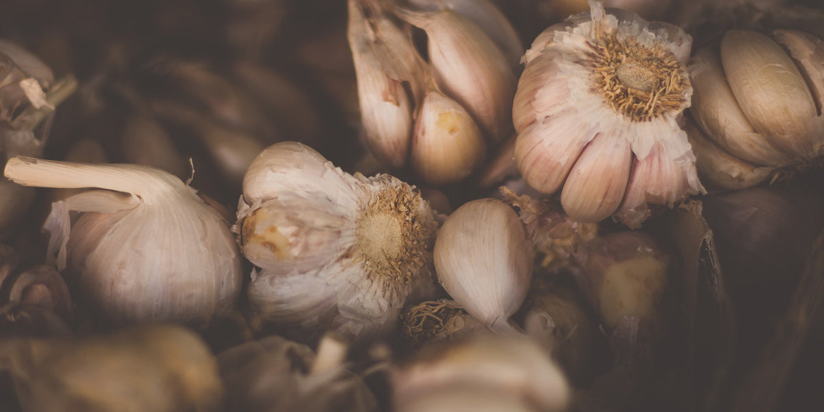 garlic superfood anti inflammatory