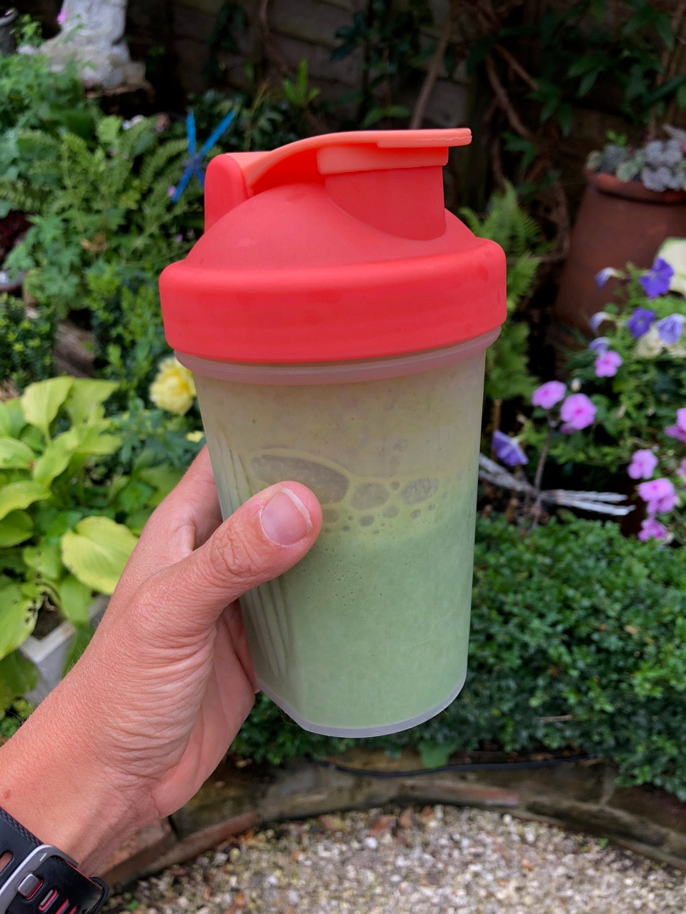 healthy protein smoothie spinach