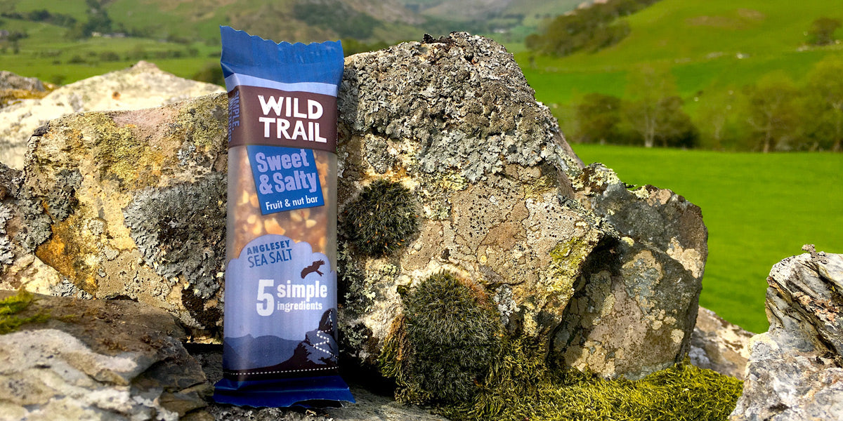 Healthy snack fruit and nut bar Wild Trail Brighter Foods Sundried review