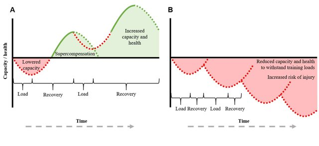 training recovery science research