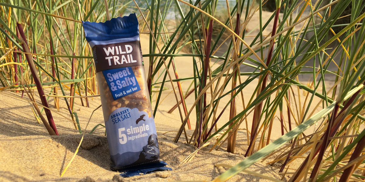 Wild Trail healthy nutrition adventure snack bar review Sundried