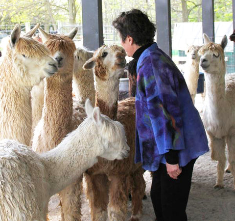 Susan Waldron with her Alpacas