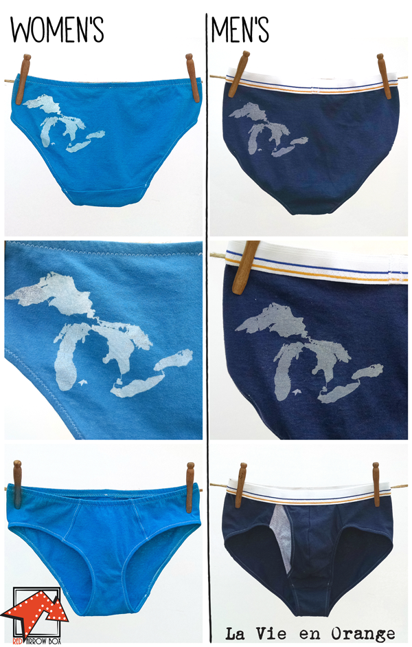 Side by side photos of the women's and men's undies offered as part of March's Red Arrow Box. The women's are an electric blue hipster/boy-cut style (or higher cut brief, not pictured) with a white screen print of the Great Lakes on the back left hip. The men's are a navy blue brief with a gray Great Lakes screen print on the back left hip and a gray contrasting fabric detail in the fly.