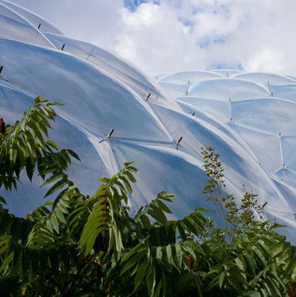 Win tickets to Eden Project!