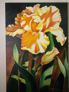 Total Yellow Iris by Shirley Jeter