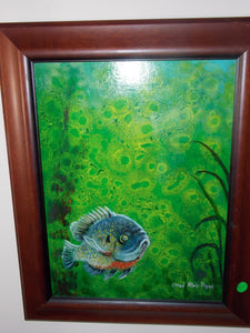 Bluegill by Lloyd Agee