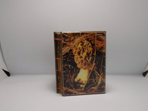 Morel Mushroom Book 4 x 6 by Whitney Withington