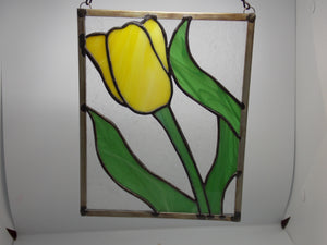 Yellow Tulip  by Teresa Howard