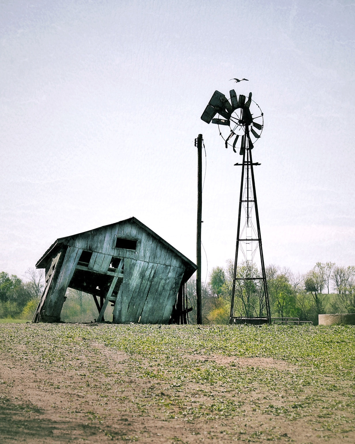 """Windmill In Danville"" by Robert Ellis"