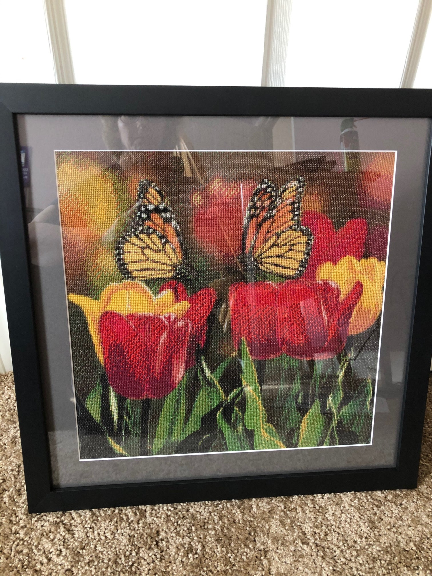 Butterfly/Tulip Picture by Dreama Hughes