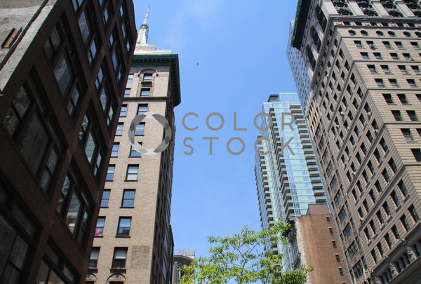 Tall buildings in downtown - Colorstock™  © Tee Dubose  - diverse stock photos