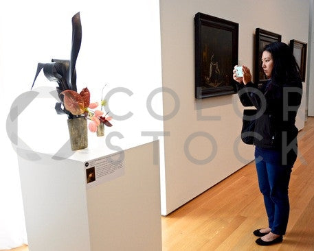 Woman taking a photo of art at gallery - Colorstock™  © Anna-Rhesa Versola  - diverse stock photos